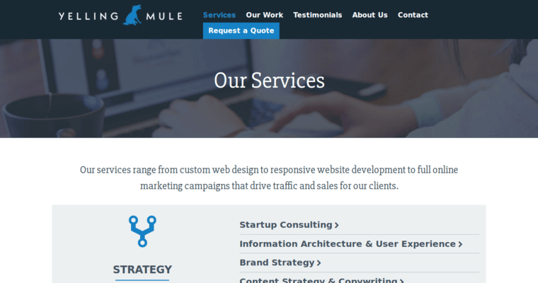 Yelling mule best boston web design agencies 10 best for Service design firms