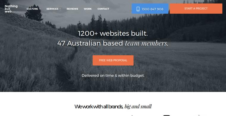 Nothing But Web Best Web Design Firms Melbourne