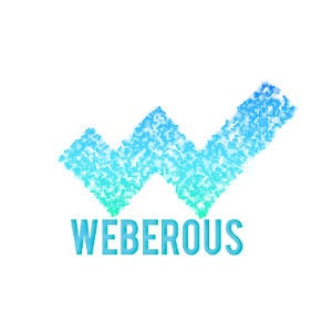 Best Website Development Business Logo: Weberous