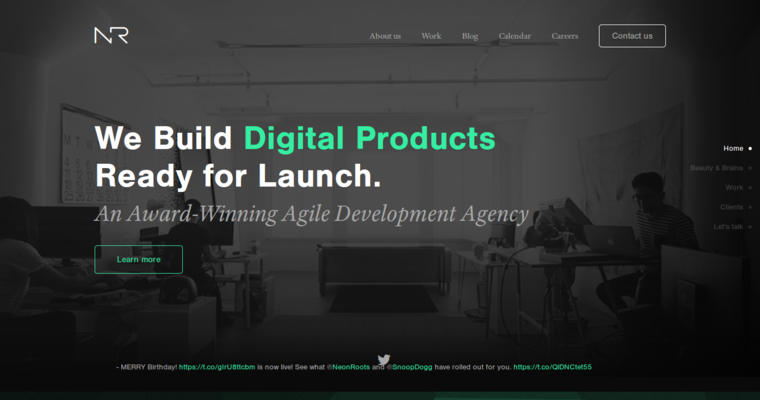 Home Page of Top Web Design Firms in California: Neon Roots