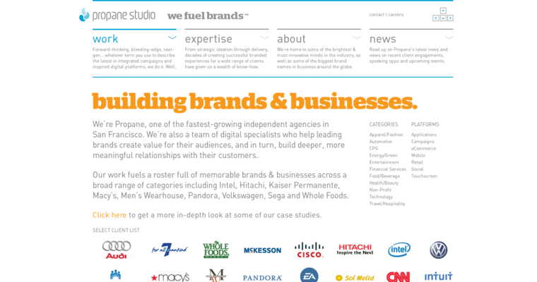 Work Page of Top Web Design Firms in California: Propane Studio