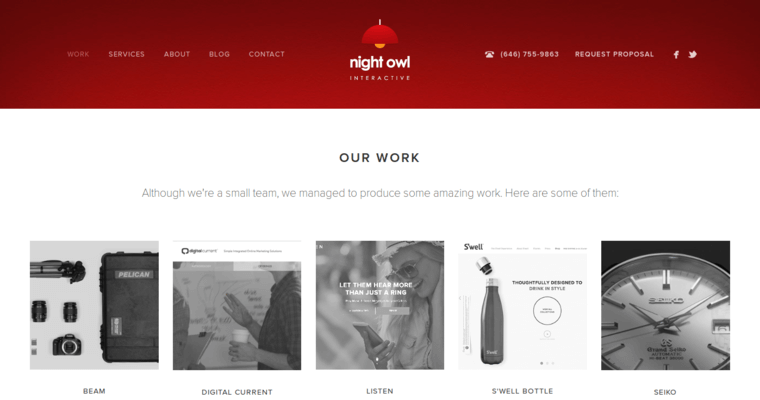 Work Page of Top Web Design Firms in New York: Night Owl Interactive