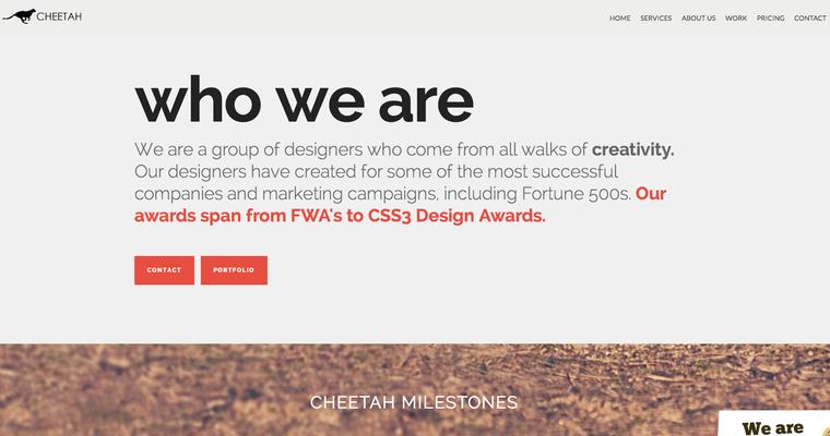 Cheetah Local | Texas Web Design